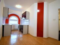 Pronájem bytu 3+1 v osobním vlastnictví, 65 m2, Litoměřice
