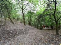 Prodej pozemku 3705 m², Velké Žernoseky