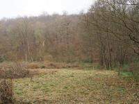 Prodej pozemku 3178 m², Brno