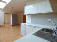 Vybavení kuchyně (Pronájem bytu 2+kk v osobním vlastnictví 49 m², Brno)