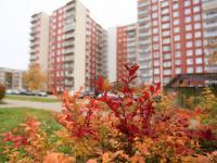 Prodej bytu 3+1 Brno-Vinohrady (Prodej bytu 3+1 v osobním vlastnictví 72 m², Brno)