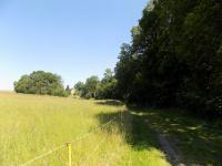 Prodej pozemku 102043 m², Liberec
