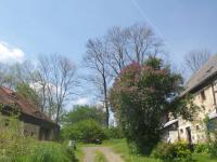 Prodej chaty / chalupy 1083 m², Krásný Les