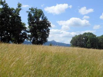 Prodej pozemku 8574 m², Liberec