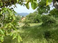 Prodej pozemku 2603 m², Dlouhý Most