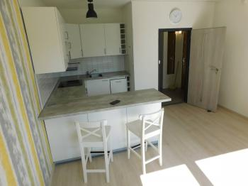 pokoj s kuchyňským koutem - Prodej bytu 2+kk v družstevním vlastnictví 44 m², Liberec