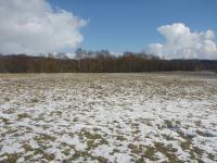Prodej pozemku 19773 m², Mariánské Lázně