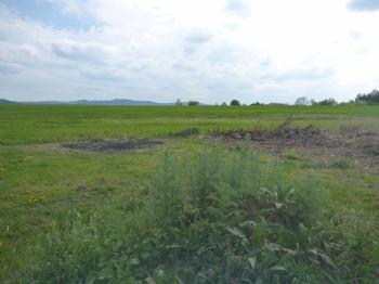 Prodej pozemku 1620 m², Františkovy Lázně