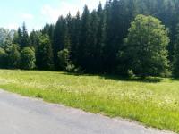 Prodej pozemku 16034 m², Stříbrná