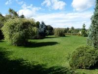 zahrada (Prodej domu v osobním vlastnictví 451 m², Františkovy Lázně)