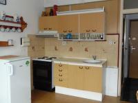 kuchyn s elektrickým sporákem - Prodej bytu 1+1 v osobním vlastnictví 38 m², Cheb