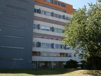 Zadní pohled na dům z parku. (Prodej bytu 2+kk v osobním vlastnictví 70 m², Praha 9 - Vysočany)