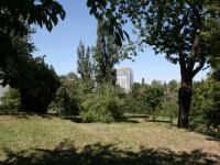 Vzrostlá, udržovaná  zeleň parku pod domem. (Prodej bytu 2+kk v osobním vlastnictví 70 m², Praha 9 - Vysočany)