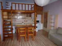 Prodej bytu 1+kk v osobním vlastnictví 24 m², Praha 10 - Vršovice