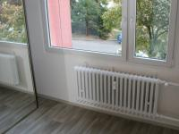 Úložná šatní skříň samostatného pokoje. (Pronájem bytu 3+1 v osobním vlastnictví 65 m², Praha 8 - Kobylisy)