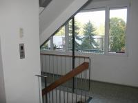 Společná chodba domu. (Pronájem bytu 3+1 v osobním vlastnictví 65 m², Praha 8 - Kobylisy)