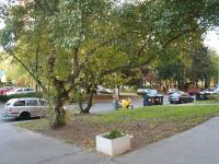 Pohled d  zeleně z hlavního vstupu do domu. (Pronájem bytu 3+1 v osobním vlastnictví 65 m², Praha 8 - Kobylisy)