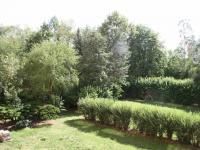 Výhled z lodžie bytu do zeleně za domem. (Pronájem bytu 3+1 v osobním vlastnictví 65 m², Praha 8 - Kobylisy)
