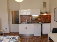 Pronájem bytu 1+kk v osobním vlastnictví 25 m², Praha 3 - Žižkov