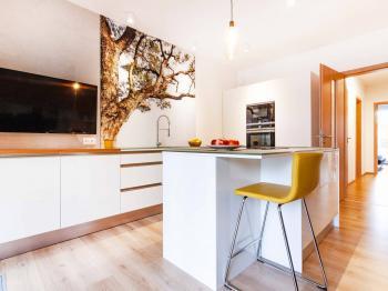 Kuchyň - Prodej bytu 3+kk v osobním vlastnictví 108 m², Praha 10 - Malešice