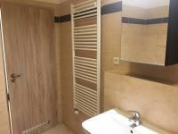Pohled ze zadní části koupelny na vstupní část. - Pronájem bytu 1+kk v osobním vlastnictví 40 m², Praha 9 - Černý Most