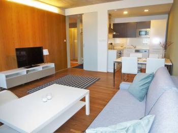 Obývací pokoj - Pronájem bytu 2+kk v osobním vlastnictví 52 m², Praha 9 - Vysočany