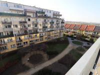 Zeleň pod okny bytu. - Pronájem bytu 2+kk v osobním vlastnictví 52 m², Praha 9 - Střížkov