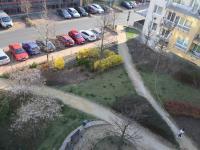 Zeleň v okolí + parkování v okolí domu. - Pronájem bytu 2+kk v osobním vlastnictví 52 m², Praha 9 - Střížkov