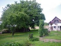 Vzrostlé stromy (Prodej domu v osobním vlastnictví 188 m², Ondřejov)