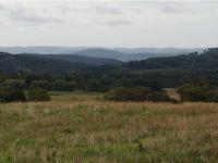 okolní krajina (Prodej domu v osobním vlastnictví 186 m², Sulice)