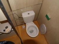 Oddělené WC (Prodej bytu 1+1 v osobním vlastnictví 44 m², Písek)