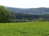 výhled z pozemku (Prodej pozemku 8000 m², Radíč)