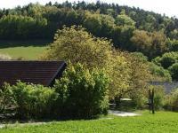 pohled z horní části na pozemek a sousedi přes silnici (Prodej pozemku 8000 m², Radíč)