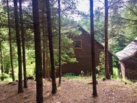 V lese nedaleko rybníka (Prodej domu v osobním vlastnictví 89 m², Konojedy)