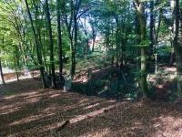 Les a klid - Prodej chaty / chalupy 60 m², Stříbrná Skalice