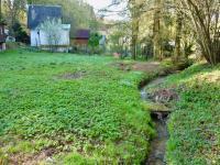Potůček na pozemku (Prodej chaty / chalupy 30 m², Mnichovice)