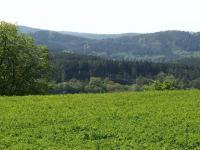 výhled z pozemku - Prodej pozemku 8000 m², Radíč