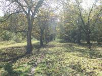 blízké sousedství  - Prodej pozemku 1300 m², Říčany