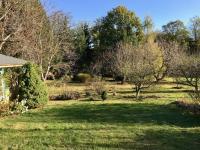 Vzrostlé stromy - Prodej chaty / chalupy 50 m², Zásmuky