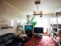 obývací pokoj (Prodej bytu 2+1 v osobním vlastnictví 50 m², Praha 3 - Žižkov)