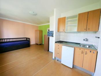 Pronájem bytu 1+kk v osobním vlastnictví 24 m², Praha 4 - Braník