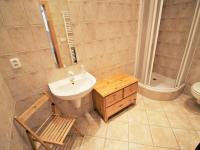 Koupelna v přízemí (Prodej domu v osobním vlastnictví 285 m², Březí)