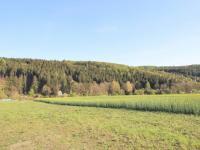 Prodej pozemku 930 m², Libeř