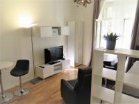 Pronájem bytu 1+kk v osobním vlastnictví 31 m², Praha 3 - Žižkov