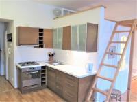 Pronájem bytu 1+kk 45 m², Praha 3 - Žižkov