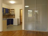 Pronájem bytu 1+kk v osobním vlastnictví 44 m², Praha 8 - Libeň