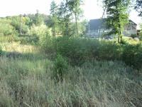 Prodej pozemku 1815 m², Homole u Panny