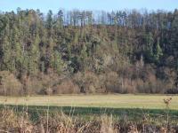 Pozemek Doudleby - údolí řeky - Prodej pozemku 2336 m², Doudleby