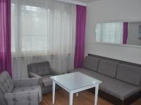 Pronájem bytu 1+1 v osobním vlastnictví 37 m², Písek
