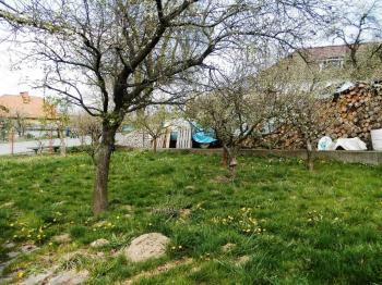 zahrada - Prodej domu v osobním vlastnictví 324 m², Vodňany